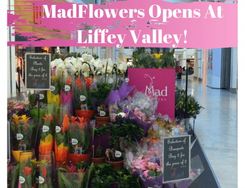 MadFlowers Opens At Liffey Valley!