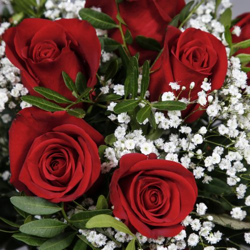 Valentines Roses for delivery