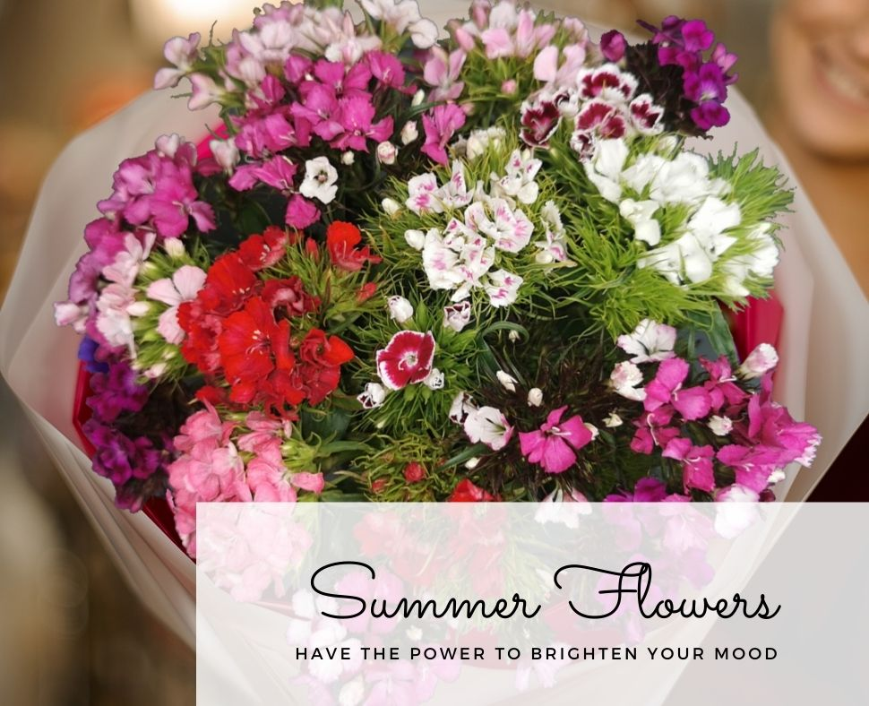 summer-flowers-blog
